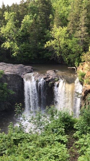 redwood falls